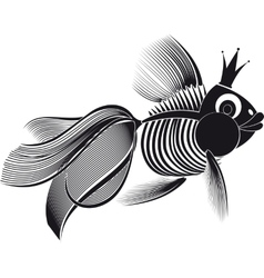 skeleton goldfish vector image