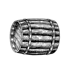 wooden wine barrel engraved hand drawn vintage vector image