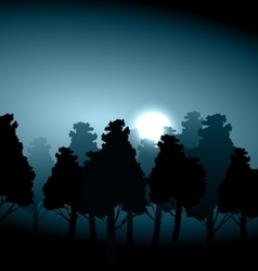 Valley middle forest in moonlight fog vector image