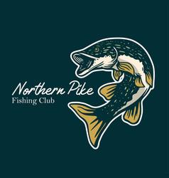 northern pike fishing club pike fish in dark vector image