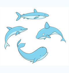 set of fish with whale shark narwhal dolphin vector image