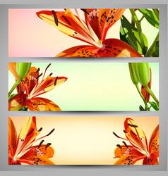 Set of floral headers vector