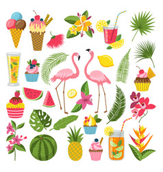 Summer time labels set for tropical party vector
