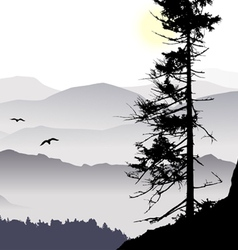 Sunrise mountain view flying birds vector