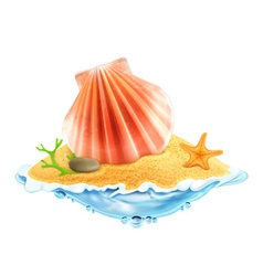 Seashell in the sand vector image vector image