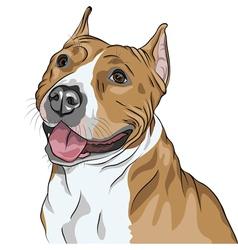 sketch portrait of dog vector image