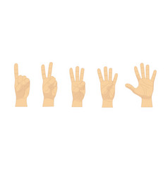 Cartoon human hand showing numbers set row vector