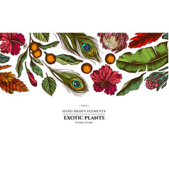 floral design with colored banana palm leaves vector image