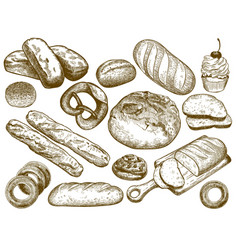 hand drawn fresh bread sesame bun pretzel and vector image