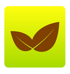 leaf sign brown icon at vector image