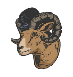 ram animal in bowler hat color sketch engraving vector image