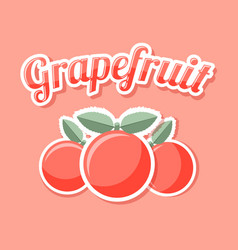Retro grapefruit on pale pink background vector