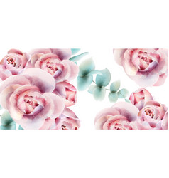 roses watercolor background card delicate floral vector image