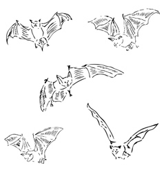 Bats in different positions pencil sketch by hand vector
