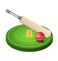 3d cricket field with green grass red ball and vector image