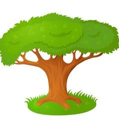 Cartoon tree vector image