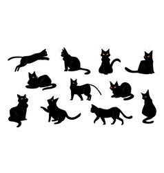 cat cartoon black kitten sitting and walking vector image