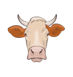 Cow head on white background vector