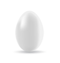 easter egg isolated vector image