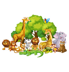 Many cute animals in park vector