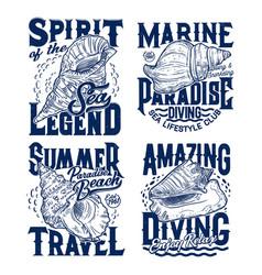 sea mollusks and snails seashells t-shirt prints vector image