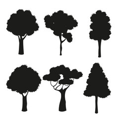 Silhouette tree different nature trunk vector