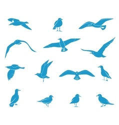 Silhouettes flying seagulls vector