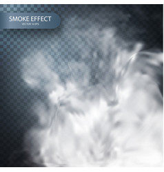 smoke effect on a transparent background vector image