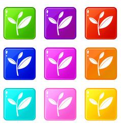 Tea leaf sprout set 9 vector