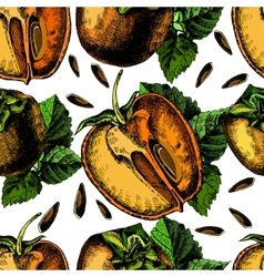 pattern of ripe persimmon vector image