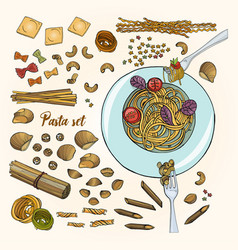 set of different types pasta colorful hand drawn vector image
