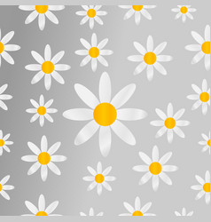 chamomiles seamless pattern background vector image