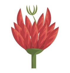 colorful red and green flower graphic vector image