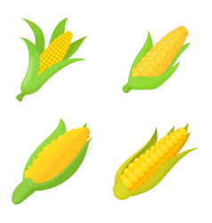 Maize icon set cartoon style vector