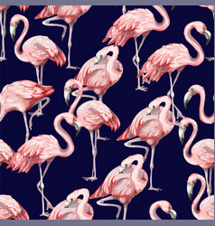 Seamless pattern with pink flamingo vector