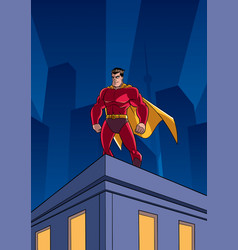 superhero roof watching vector image