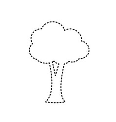 tree sign black dashed icon vector image
