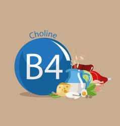 Vitamin b4 choline vector