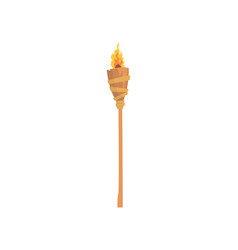 burning beach bamboo torch cartoon vector image
