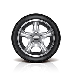 object tire vector image vector image