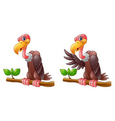 cartoon vulture on a tree branch collections vector image