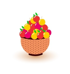 Different colored apples in the basket vector