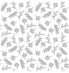 floral seamless pattern hand drawn herbs vector image