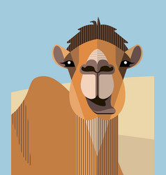 head of a camel vector image