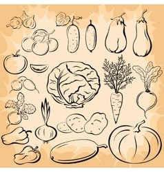 Vegetables Pictograms Set vector image