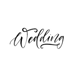 wedding phrase lettering vector image