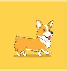 cute corgi vector image