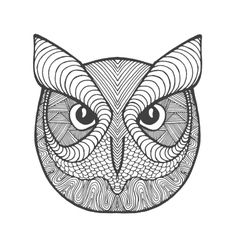Eagle owl head Adult antistress coloring page vector