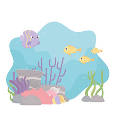 fishes life coral reef cartoon under sea vector image