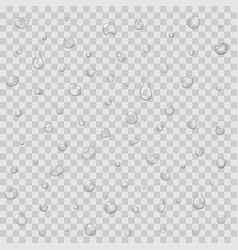 seamless pattern with rain drops isolated vector image